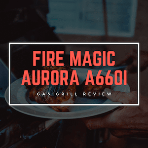 Grill Review_ Fire Magic Aurora A660i [March 2019]