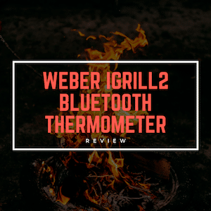 Weber iGrill2 Bluetooth Thermometer Review [March 2019]