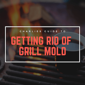 How To Get Rid of Grill Mold (Its Simple We Promise)