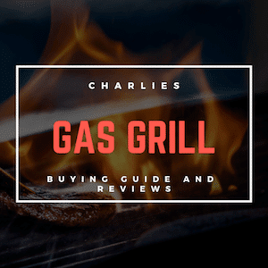 The Best Gas Grills of 2019 - Grill Reviews and guides 2019
