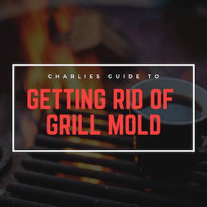 How To Get Rid of Grill Your Mold