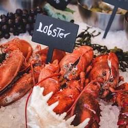 Buy Seafood Online
