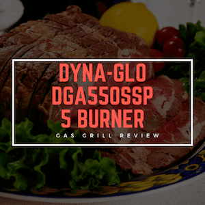 Dyna Glo 5-Burner DGA550SSP-D Review