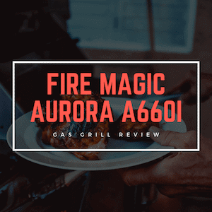 FireMagic A660i Review