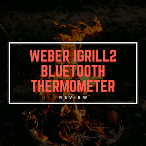 Weber iGrill 2 Thermometer Review