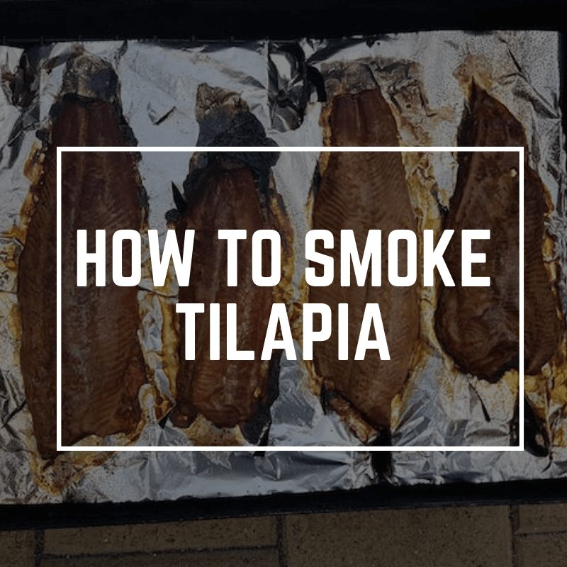 smoked tilapia electric smoker