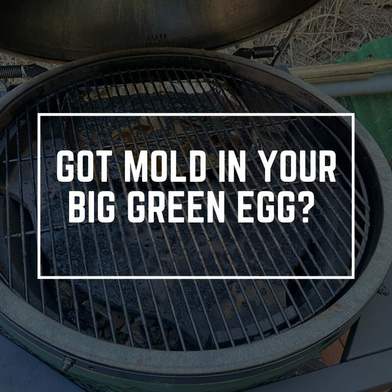 LEARN HOW TO REMOVE MOLD IN BIG GREEN EGG